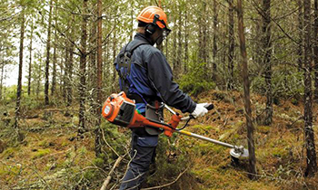 Husqvarna-Forestry-Clearing-Saws.jpg