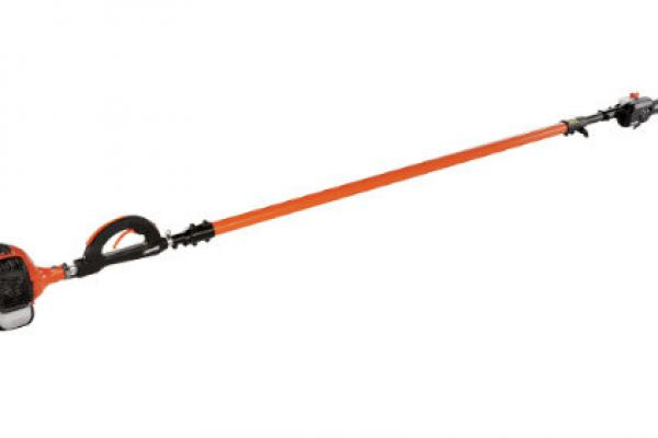 CroppedImage600400-Echo-Pruner-PPT-280.jpg