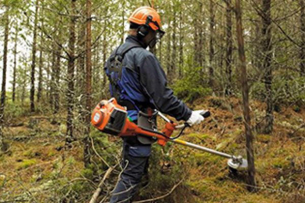 CroppedImage600400-Husqvarna-Forestry-Clearing-Saws.jpg