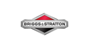 Briggs and Stratton min